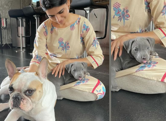 Samantha Akkineni's loveable selfie with her new pet Saasha!