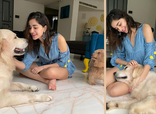 Ananya Panday's 'pawsome' day with her furry babies!
